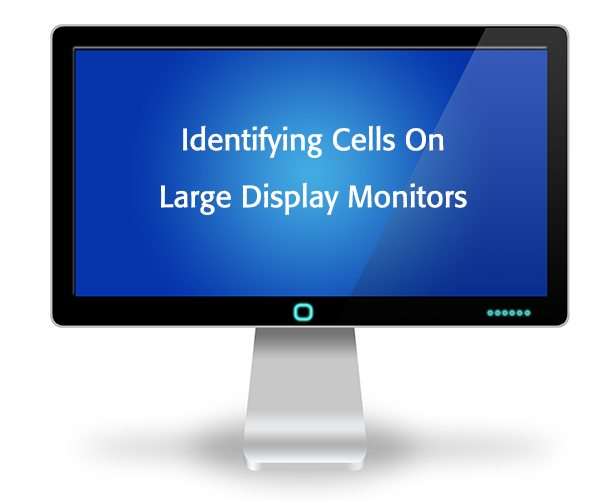 Two Ways To Identify Cells On Large Display Monitors